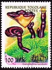 Togo Stamp Lingzhi Chinese Medicinal Mushroom Ganoderma Lucidum