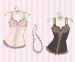 Variety of sexy corsets - 27849555
