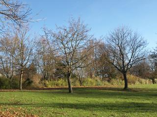 Park am Baggersee - Naherholungsgebiet
