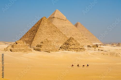 Camels Line Walk Pyramids All - 27859938