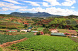 Vietnam Farmland
