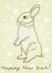 rabbit standing on hind legs against yellow background