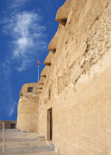 Parrot beak openings in Arad fort to defend from invader