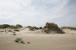 Fototapeten,düne,natur,nordsee,niedersachsen