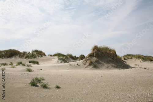 Fototapeten,sanddünen,natur,north sea,advice