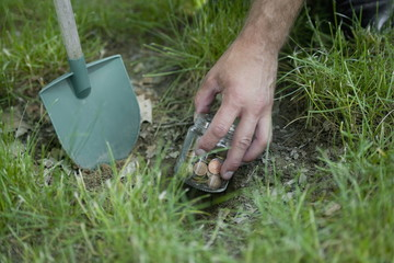 Hand with shovel hiding jar of coins in grass