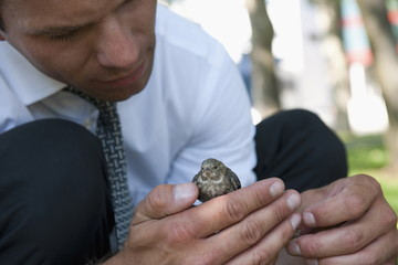 Nature loving businessman holding bird