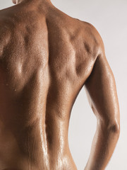 Rear view of young man's wet back, studio shot