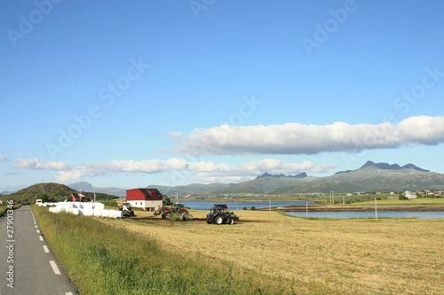 Foto op Plexiglas Antarctica 2 Farm and fields of Leknes i Lofoten