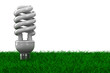 energy saving bulb on grass. Isolated 3D image