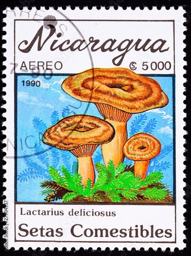 Nicaragua Stamp Mushroom Saffron Milk Cap Lactarius Deliciosus