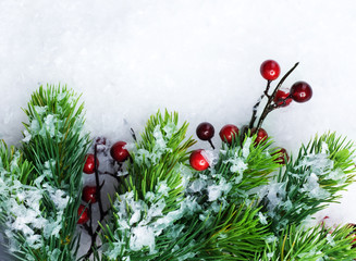 Christmas Tree over Snow