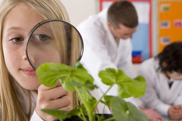 School girl using magnifying glass to look at plant in classroom
