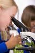 School children looking into microscopes in classroom laboratory