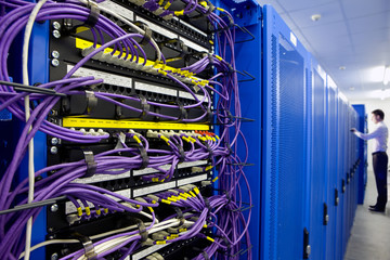 LAN cables and network servers