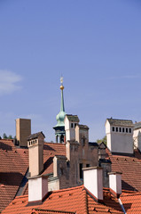 Chimneys and Roofs