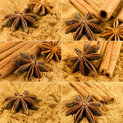 Cinnamon. Collage