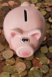 Sparschwein - gib mir mehr poster