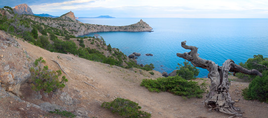 "Coastline of ""Novyj Svit"" reserve (Crimea, Ukraine)"
