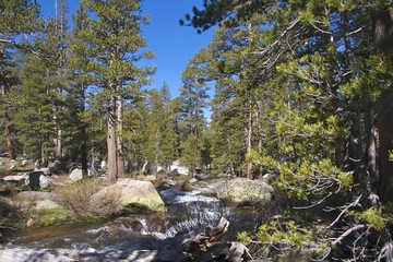 River near Tuolomne Meadows, Yosemite National Park, CA