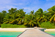 Jetty, beach and jungle