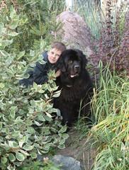 Мальчик в обнимку с черным ньюфаундлендом в зарослях зелени