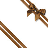 Noeud marron et ruban diagonal