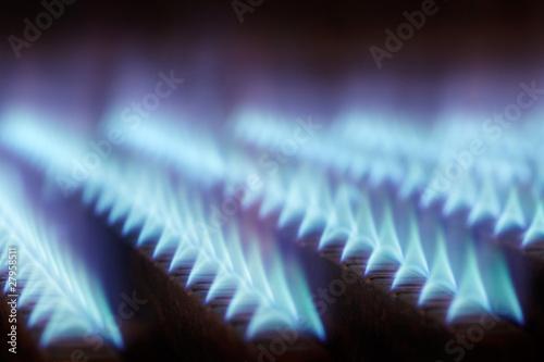 In de dag Vuur / Vlam gas flames 01
