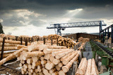 Fototapety Sawmill (lumber mill)