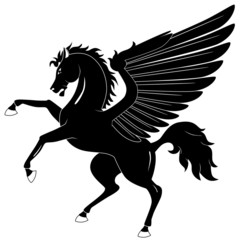 Black Pegasus on white background