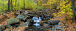 Autumn creek panorama with yellow maple trees