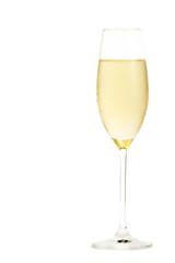 sektglas mit kaltem champagner gefüllt auf weissem hintergrund