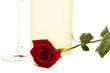 rote rose vor einem sektglas und stehender flasche prosecco
