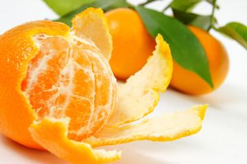 clementinen #5