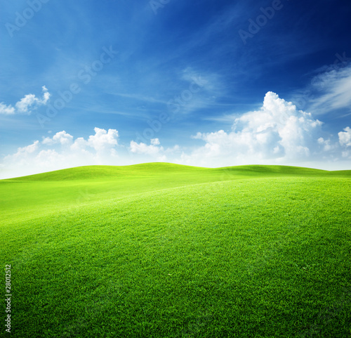 Foto op Canvas Weide, Moeras green field and blue sky