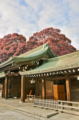 japanese temple in spring