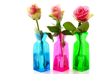 Pink roses in colorful vases