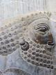 Bas relief sculpture, Persepolis