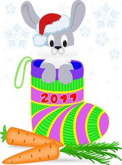 New Year's rabbit