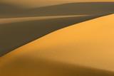 Sand dune Close detail