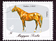 Hungary Postage Stamp Hungarian Horse Breeds Gidran Isolated