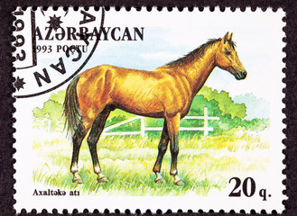 Azerbaijan Stamp Brown, Akhal-Teke Breed Horse Standing Pasture