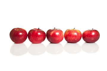Fresh red apples in line on white isolated background