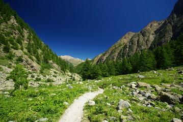 sentier de randonnée haute montagne