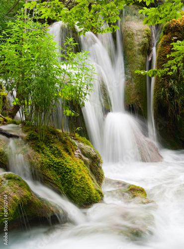 Fototapeta Waterfall currents in national park. Plitvice, Croatia.