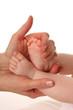 Babyfüße in Hand