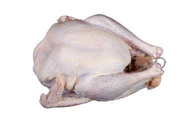 Raw Uncooked Turkey Bird