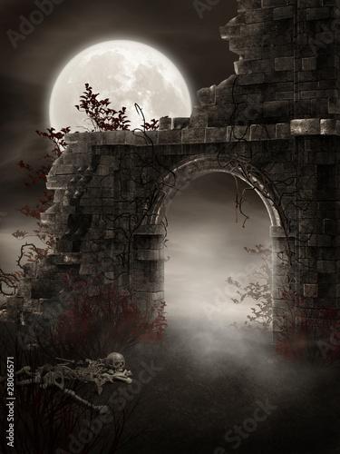 Mroczne ruiny ze szkieletem - 28066571