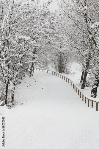 krajobraz ze śniegiem