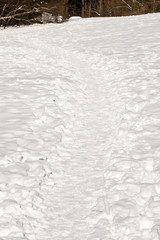Weg mit Schnee, way with snow